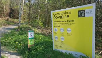 Covid-19: No deaths and 320 confirmed cases reported
