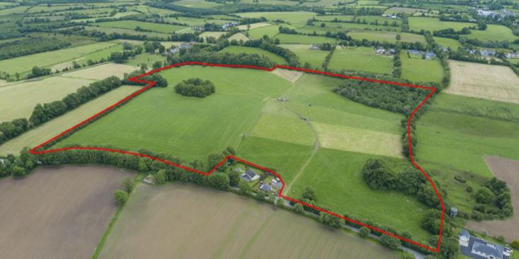 Auctioneer sells Limerick farm in four minutes flat!